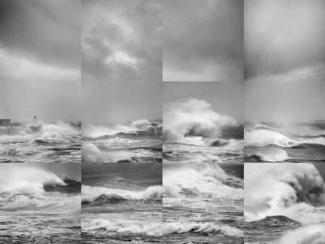 SOFAM - Fototentoonstelling Marie-Françoise Plissart: Aqua Arbor nog tot 31 januari